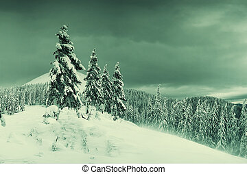 Winter evening in mountains
