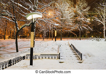 Winter evening in the city Park