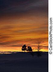 Winter evening sky