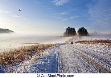 winter, fahren, krankheit, -, england