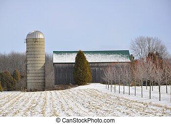 Winter farmland landscape