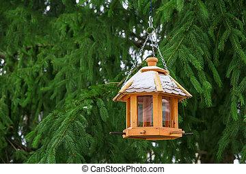 winter., feeders fugl