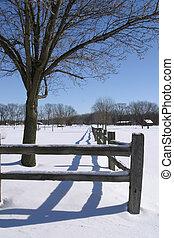 Winter Fence Line