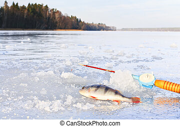 Winter fishing on ice