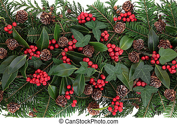 Winter Flora - Winter and christmas flora with red berry...