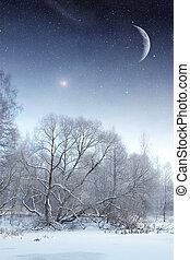 winter- fluß, an, night., elemente, von, dieser, bild, möbliert, per, nasa