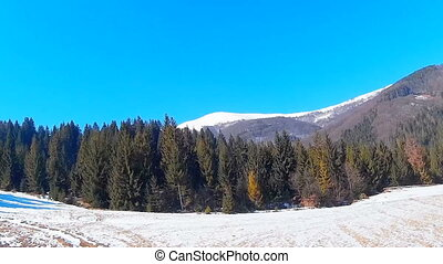 Winter forest and mountains covered with white snow under a blue sky