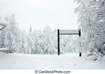 Winter forest and ski-run gate