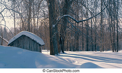 Winter forest in a hoarfrost. Snowfall. Small wooden house.