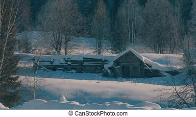 Winter forest in a hoarfrost. Snowfall. Small wooden house....