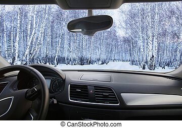 winter forest in the cabin cars