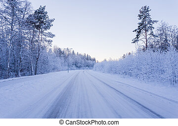 Winter forest with road covered with snow