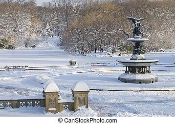 Winter Fountain Central Park