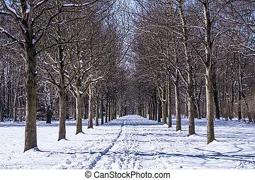 Winter, Gasse