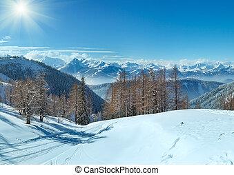 Winter grove near Dachstein mountain massif