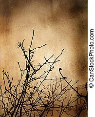 winter, grunge, achtergrond