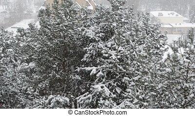 winter heavy snowfall