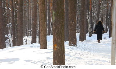 winter, het lopen.