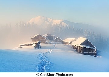 Winter high in the mountains