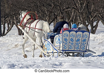 Winter holiday-walk in carriage with white horse in a winter...