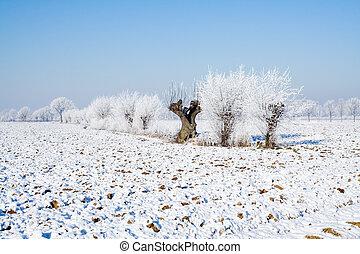 Winter Holland