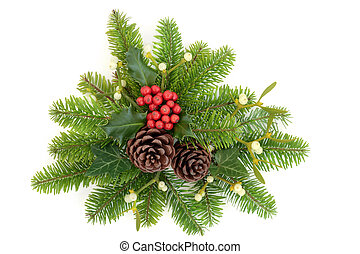 Winter Holly and Greenery - Winter holly, fir, ivy,...
