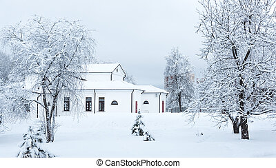 winter home in trees