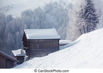house in winter forest