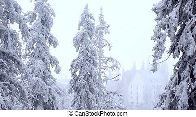 Winter house in Carpatian mountain - Winter time in...