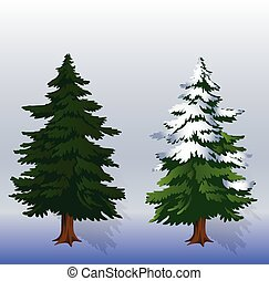 Winter illustration Two Christmas trees in the forest on a light blue background,