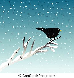 Winter illustration with blackbird on branch