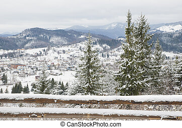 Carpathian Mountains.