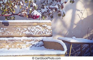 Winter in garden