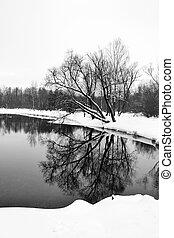 Winter in Gatchina park