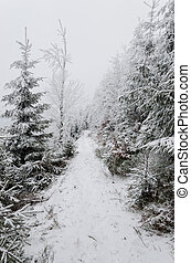 winter in mountains on foggy overcast day - stock photo