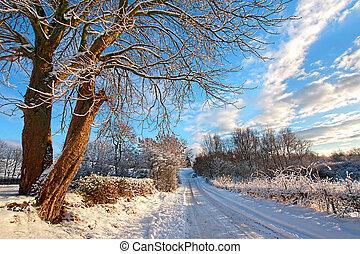 Winter in Scotland