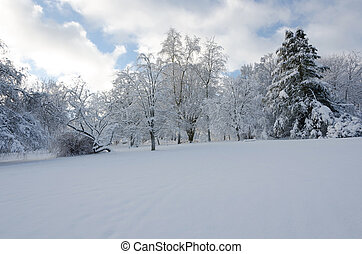 winter in sweden with a lot of snow