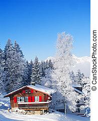 Winter in the alps - Winter in the swiss alps (Flumserberg,...