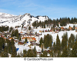 Winter in the alps - Winter in the swiss alps (Amden,...