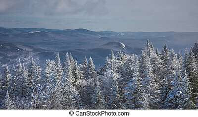 Winter in the mountains of Quebec