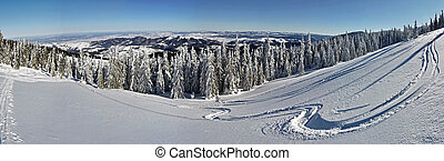 Winter in the mountains panorama
