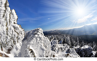 national park Sumava - Winter in the national park Sumava -...