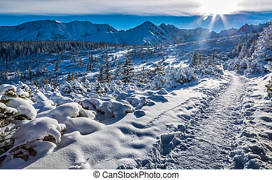 Winter in the Tatras Mountain