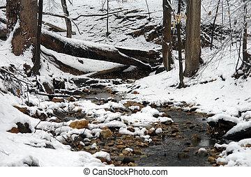 Rock Creek park - Winter in Washington DC, Rock Creek park