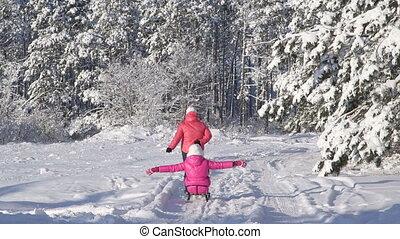 Winter, kind, Schnee, clipart kinderschlitten, Ziehen, wald,...
