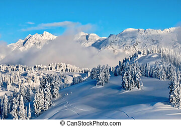 Winter ladscape forest and mountains covered with snow and frost after heavy snowfall.