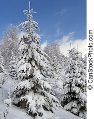 winter landscape 1 - winter mountain landscape with snow -...