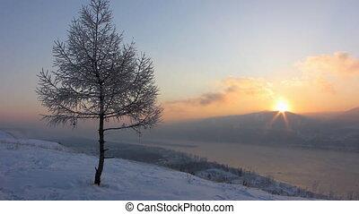 Winter landscape 6