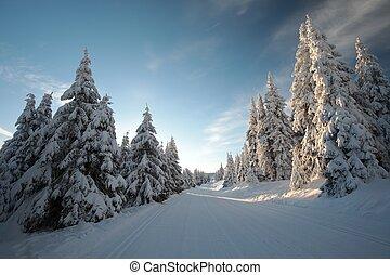 Winter landscape at dawn