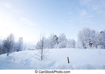 Winter landscape at Kiruna Lapland Sweden